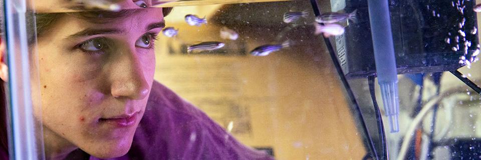 Student looking at aquarium