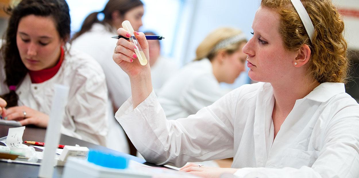 Post-Baccalaureate Programs | Rockhurst University