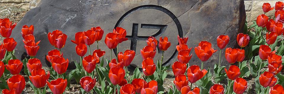 Rockhurst logo flowers