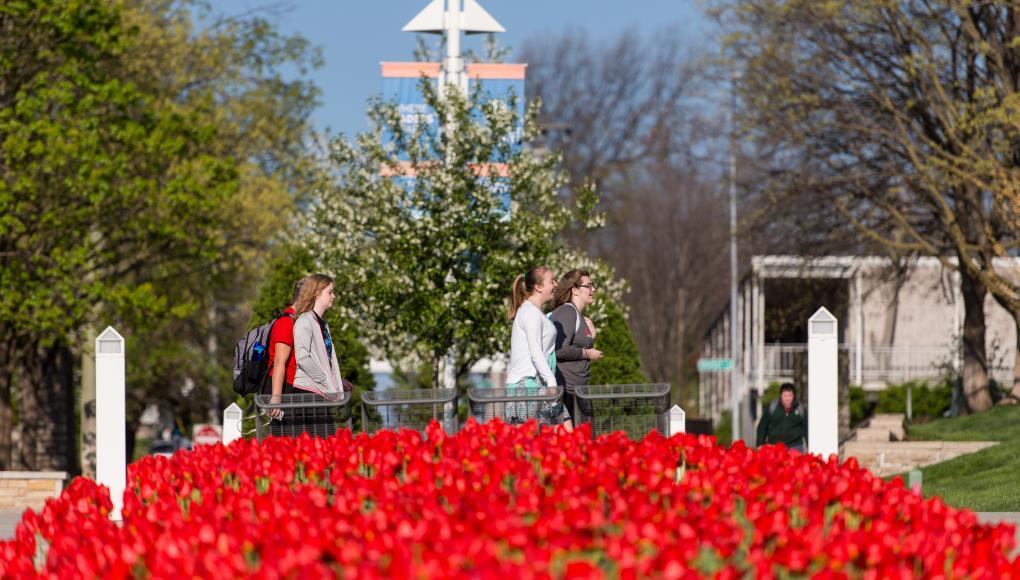 Rockhurst campus tulips