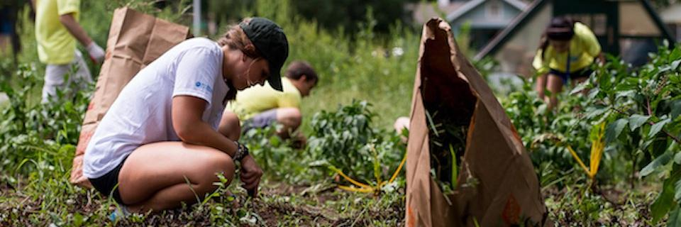 Students gardening near campus