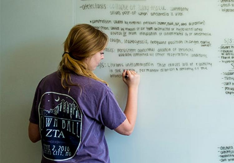 A student studies for a health science exam by writing on a white board wall